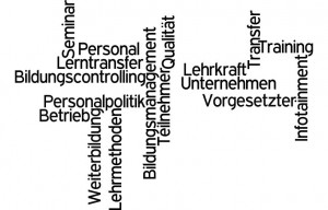 Bildungsmanagement Personalpolitik Bildungscontrolling