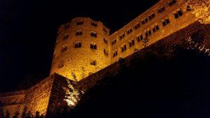 Heidelberg Schloss demographischer Wandel